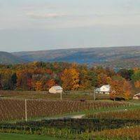 Hammondsport Accommodations, in the Heart of the Southern Finger Lakes