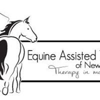 Equine Assisted Therapy of  New Jersey a Non-profit Organization