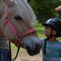 Reining Strength Therapeutic Horsemanship