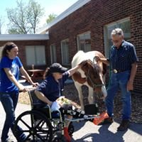 Remember To Dream Therapeutic Riding Center