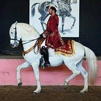 Patrick King Horsemanship