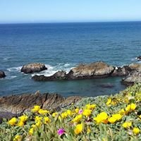 Sonoma Driving Tours