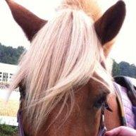 ManeStream Therapeutic Riding at Merkel Farm