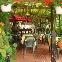 Momo's Restaurant
