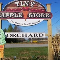 Tiny Apple Store