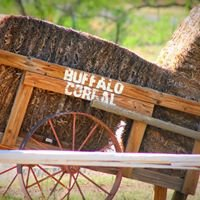 Buffalo Corral Riding Stables