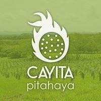 Cayita Pitahaya - Dragon Fruit Costa Rica