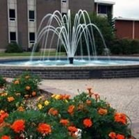 NSU College of Business & Technology