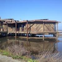 The Baylands Nature Interpretive Center