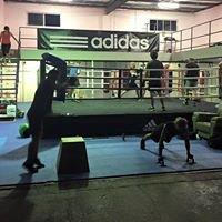 Palm Beach Currumbin Boxing Club