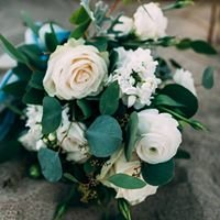Tangled Lotus Floral Designs