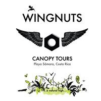 Wing Nuts Canopy Tours