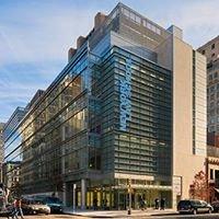 New York Law School LL.M. Graduate Programs