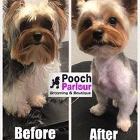 Pooch Parlour