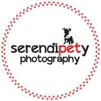 SerendiPETy Photography