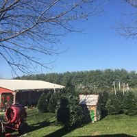 Country Charm Tree Farm