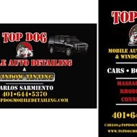 TOP DOG MOBILE AUTO DETAILING & WINDOW TINTING