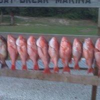 Day Break Marina
