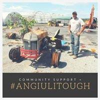 Angiuli's Farm Market