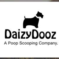 Daizy Dooz