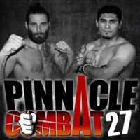 Pinnacle Combat
