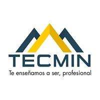 Tecmin - Instituto de Equipo Pesado