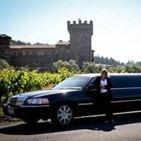 All In One Limousine Service
