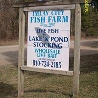 Imlay City Fish Farm