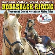 Mountain Trail Rides Horseback Riding & More