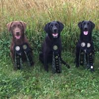Zumbro River Sporting Dogs, LLC