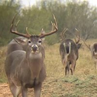 Deer Down Outfitters