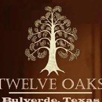 Twelve Oaks Hill Country Outdoor Wedding Venue