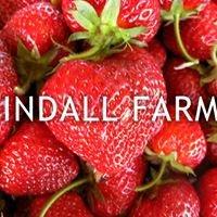 Tindall Farms