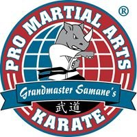 PRO Martial Arts Germantown