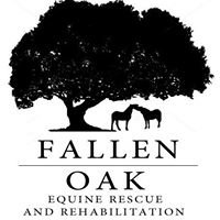 Fallen Oak Equine Rescue and Rehabilitation, Inc.