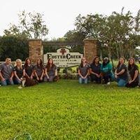 Foster Creek Veterinary Hospital