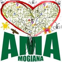 Ama Mogiana Associação do Meio Ambiente Abelhas e Polinizadores
