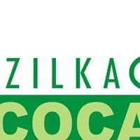 Ecocabs-India