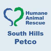 ARL South Hills Petco Offsite Adoptions