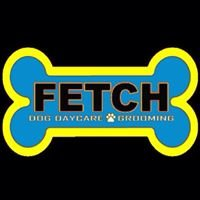 Fetch Dog Daycare & Grooming