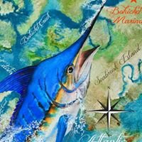 Bohicket Charters