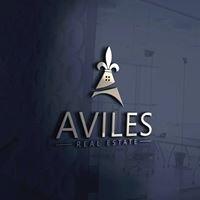 Aviles Real Estate