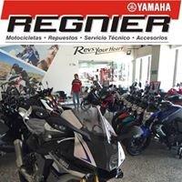 Yamaha Regnier Cali / Yamaequipos