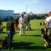 Puppy Imprinters Academy