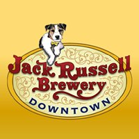 Jack Russell Downtown