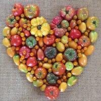 Sprout Organic Farm