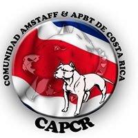 Comunidad Amstaff & Apbt De Costa Rica
