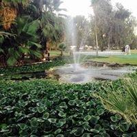 Imperial Palms Resort at Barbara Worth
