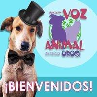 Asociación Voz Animal-Refugio Orosi