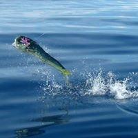 Sierpe-Fishing